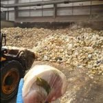 Over 100 tons of food waste in 2 weeks due to panic buyers