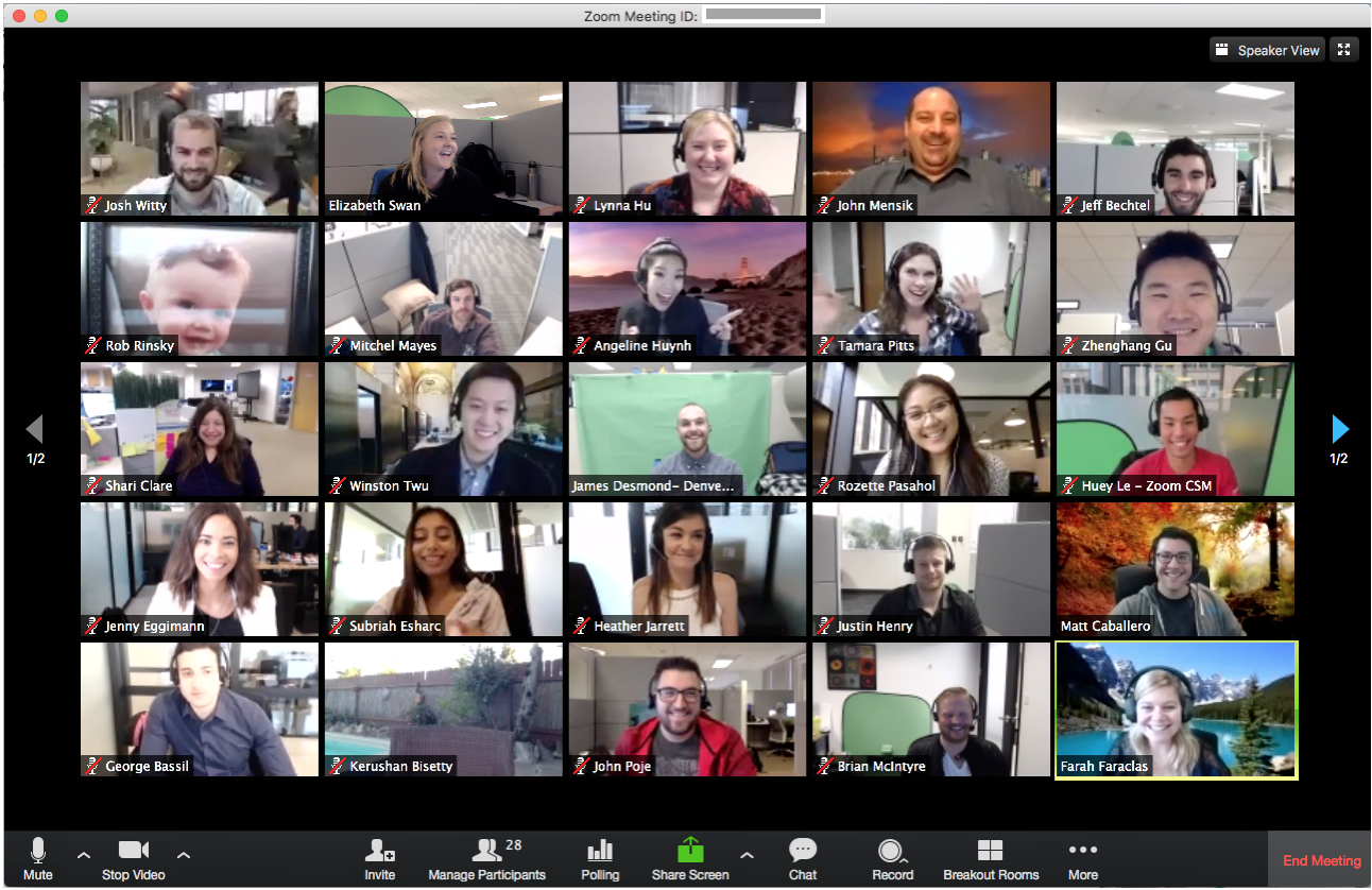 This is how a Zoom meeting looks like